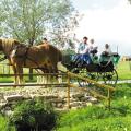 Folklórne slávnosti v obci Podkylava